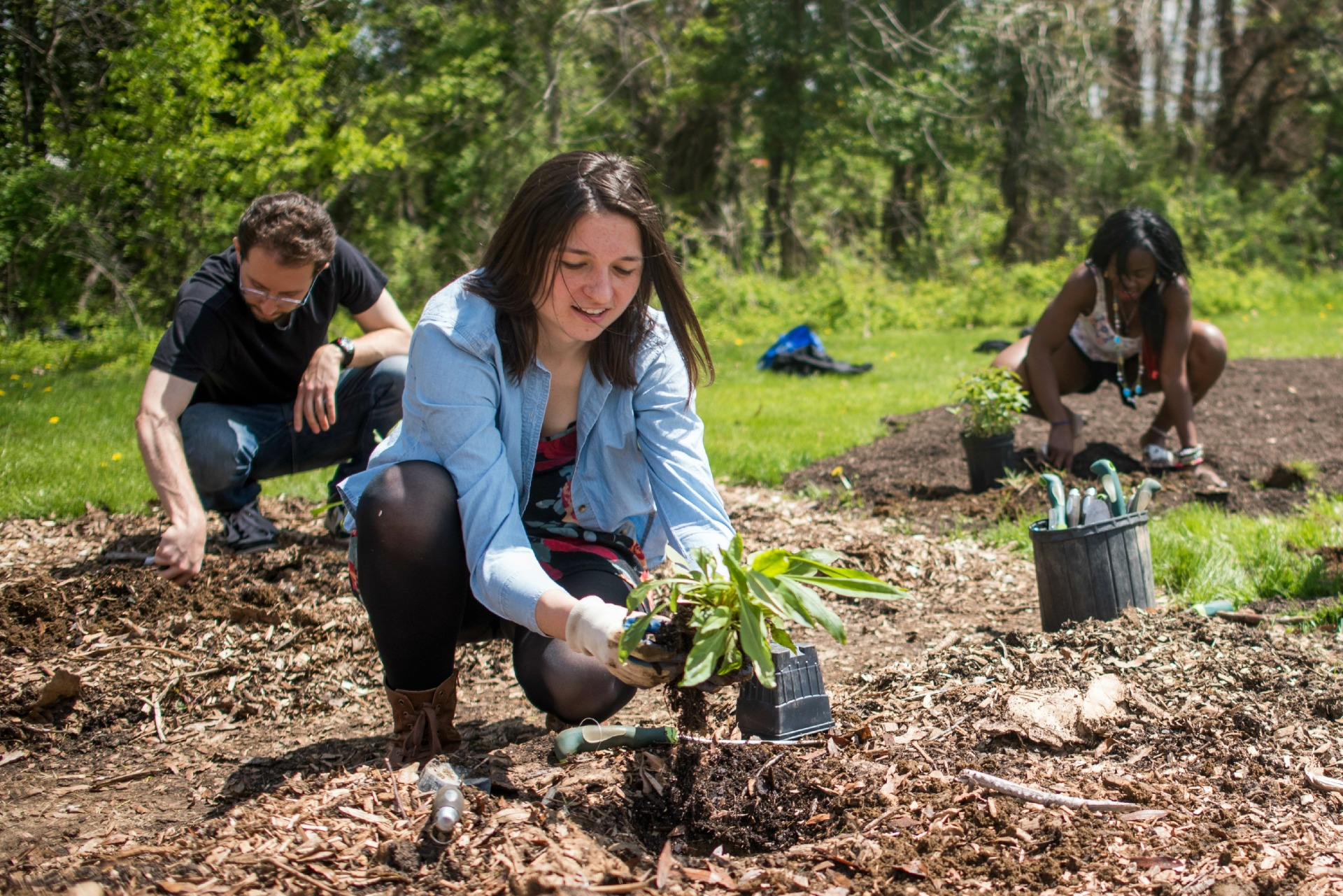 jill-wrigley-student-group-planting-food-forest-2